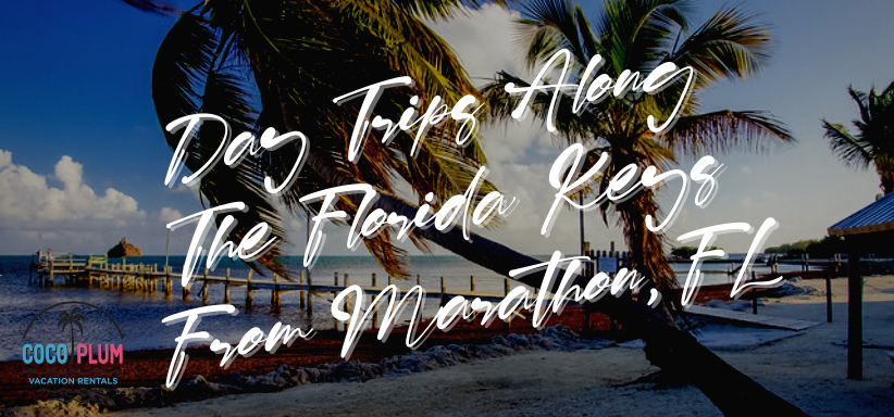 Day Trips Along The Florida Keys From Marathon, FL
