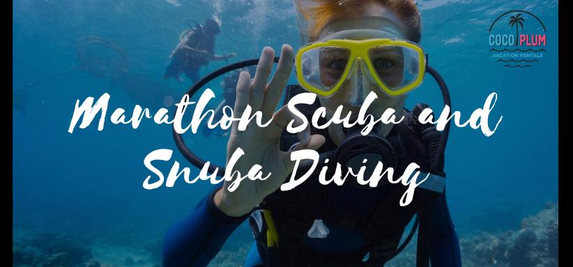 Scuba And Snuba Diving In Marathon Florida