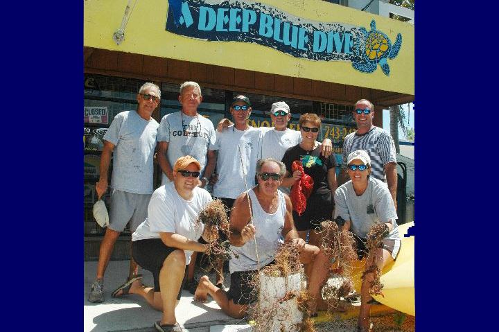 A Deep Blue Dive-Dive Shop